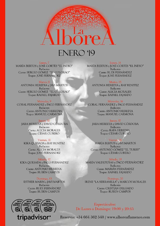 flamenco enero 2019 granada