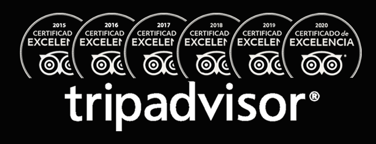 tripadvisor 20